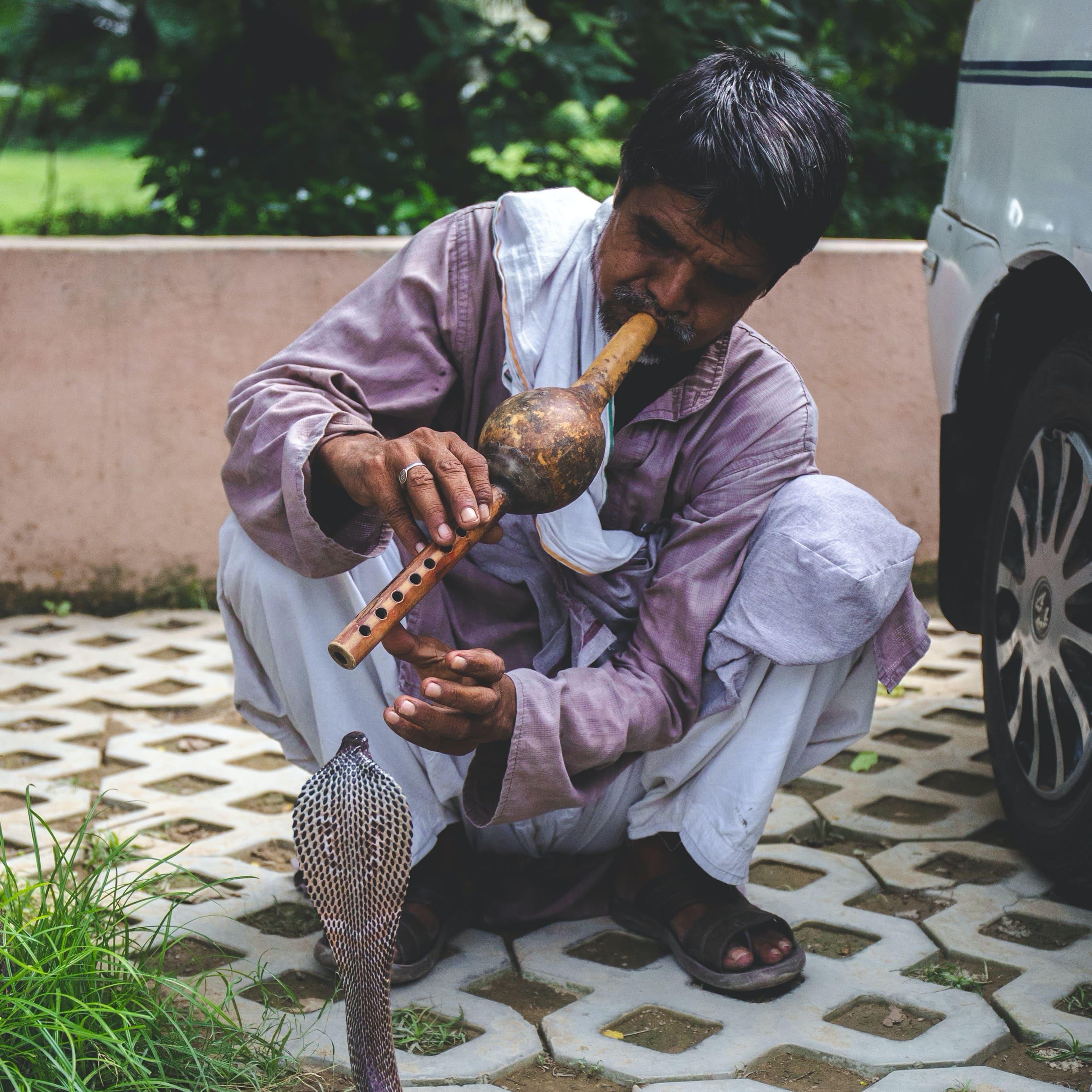 Кейс: простой слив с пушей на потенцию ROI 75% (Индия)