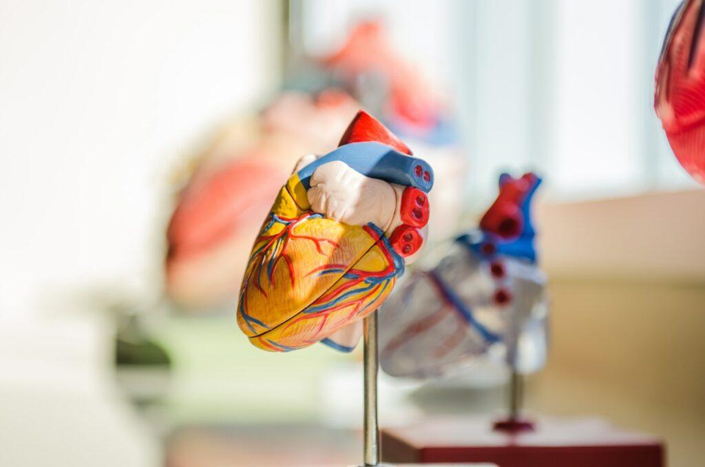 CardioBalance